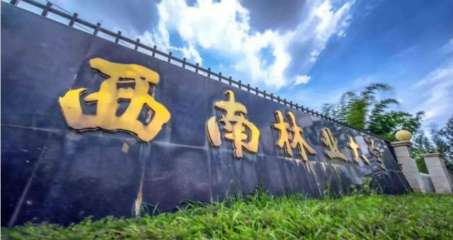 云南学历提升中心:西南林业大学