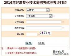 17年云南经济师准考证打印