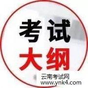 云南考试中心:2018全国税务师职业资格考试大纲《涉税服务实务