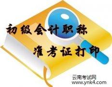 云南省考试中心:大理州2018年会计初级资格考试准考证下载打印