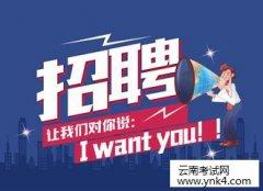 云南人事考试网:2018年中共保山市招聘公益性岗位人员公告
