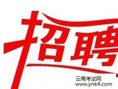 云南人事考试网:2019年红河州蒙自市监察委员会招聘