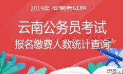 云南公务员考试:2019年省公务员报名缴费人数查询(每日更新)