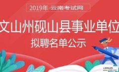 事业单位招聘:2019年文山州砚山县事业单位招聘拟聘名单公示