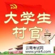 村官:2019年云南省普洱市事业单位定向招聘大学生村官