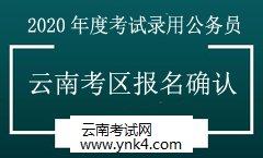 公务员:2020年度中央机关考试录用公务员云南考区报名确认须知