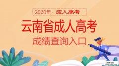 学历提升:2019年云南省成人高考成绩查询入口