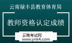 教师资格证:2019年云南禄丰县教育体育局秋季教师资格认定公示