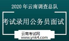 公务员:2020年国家统计局云南调查总队考试录用公务员面试通知