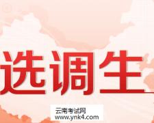 选调生:2020年云南省滇中引水工程有限公司选调工作人员(第二批
