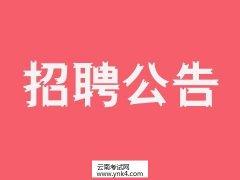 云南人事考试网:2020年云南省蒙自市财政局招聘